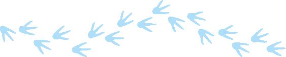Pinguin voetstappen